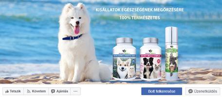 állategészség facebook