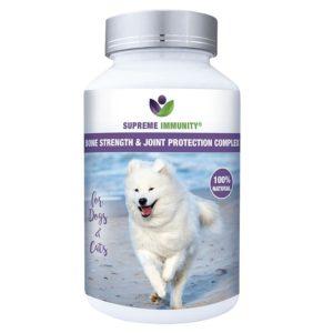 Bone Strength & Joint Protection Complex kutyáknak és macskáknak